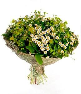 z11423611Q,Bukiet-z-kwiatow-polnych